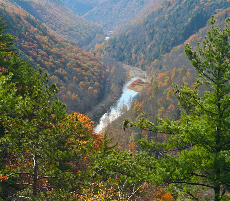 Grand Canyon of Pennsylvania