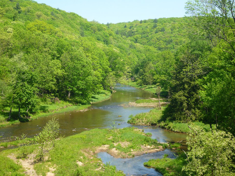 Sandy-Creek-Trail-05-20-2012-Copyright-Vincent-Troia-1.jpg