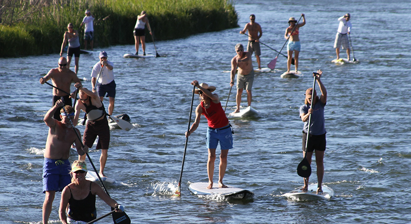 Paddle Board Race
